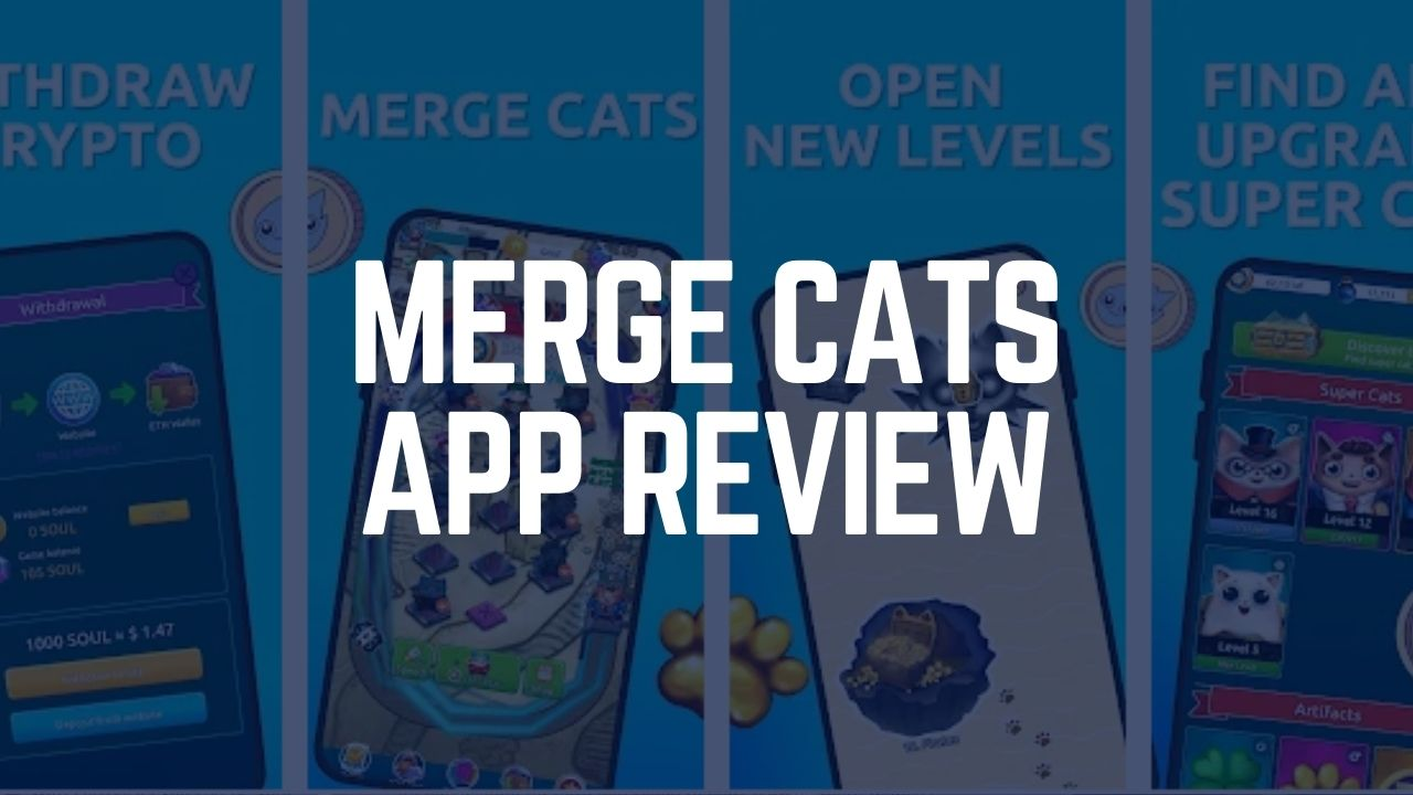 Merge Cats App Review – Is it Legit or Scam? 2021